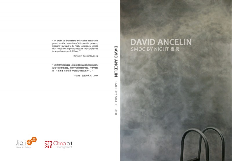 David Ancelin Smog by night catalogue cover
