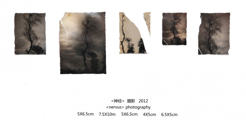 4. Guo Peng Nerve 2012