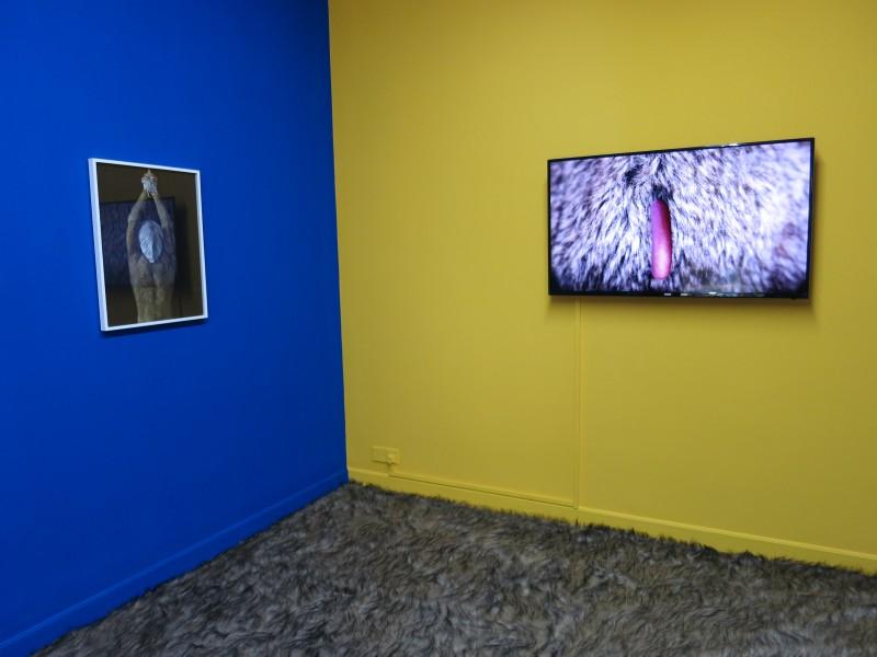 Wang Haiyang solo show at Capsule Shanghai exhibition view