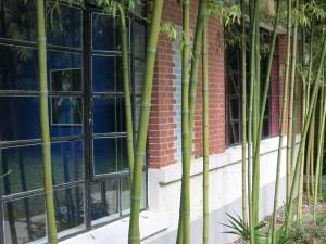 Capsule Shanghai