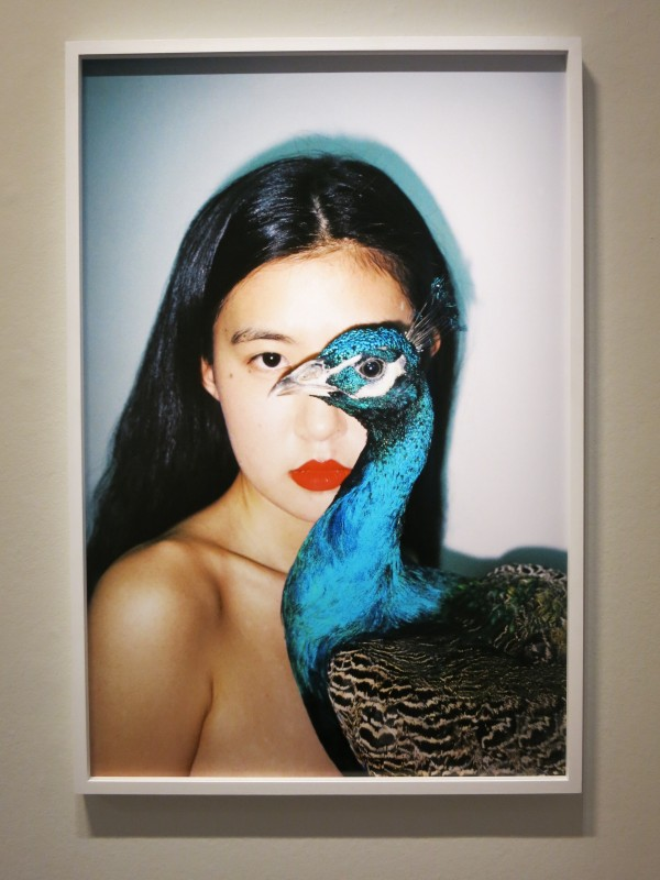 Ren Hang MEP exhibition